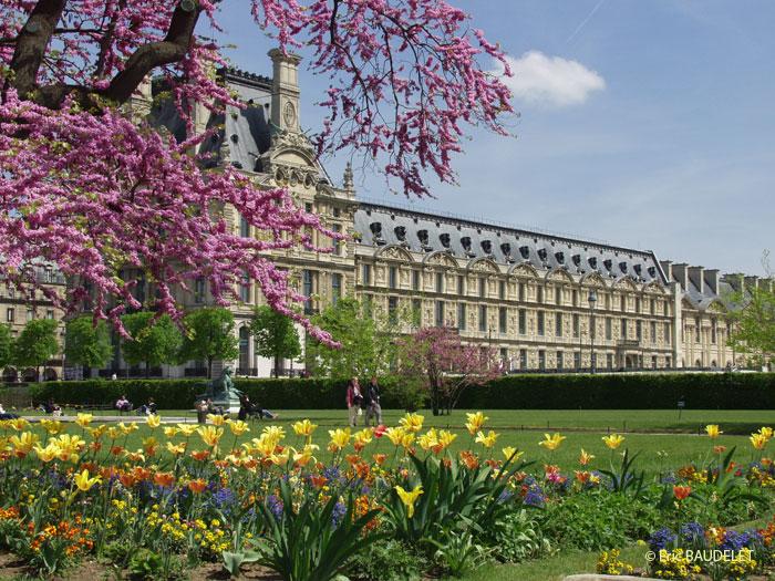 Guida di parigi chartres e per escursione ai castelli for Jardin jardin tuileries